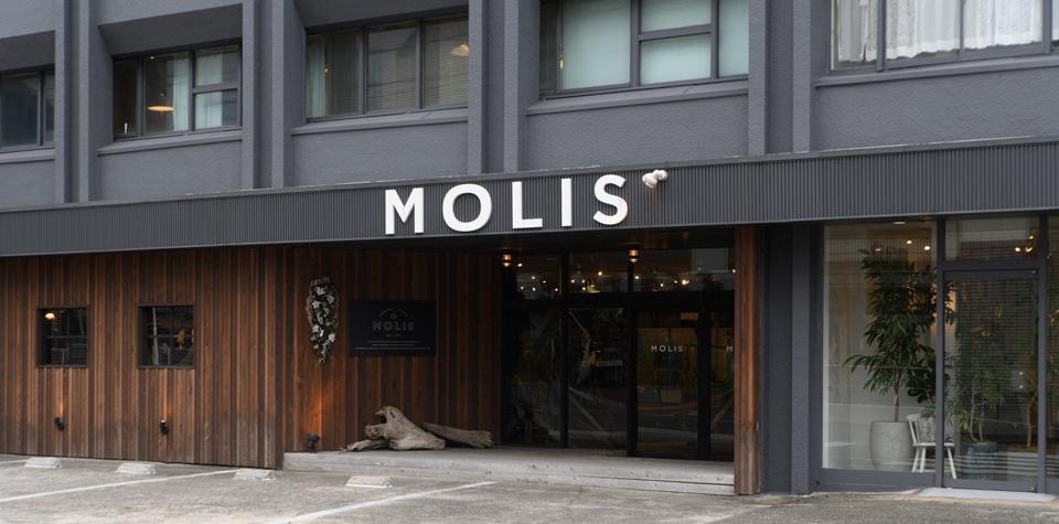 20180616-MOLIS_detail02