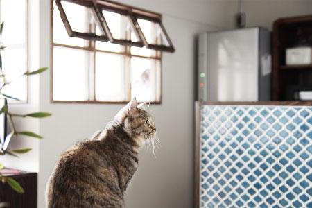 WORKS 109「猫とゲームと私」名古屋市昭和区・マンションリノベーション