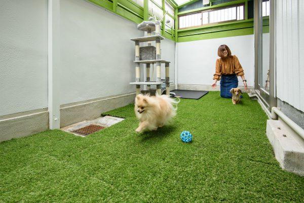Pet Share 180° 上飯田(名古屋市北区)