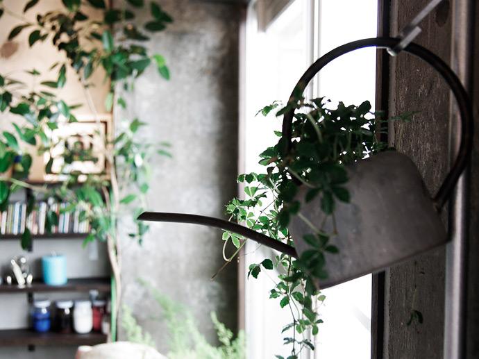 グリーンのある暮らしを楽しむ。ボタニカルインテリアのアイデア集