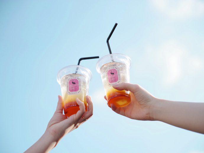 【コーノコーラ(名古屋市・ブランディング)】クラフトコーラ専門店のプロジェクトがスタート